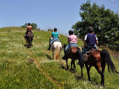 Конна езда - Хотел Център - Априлци